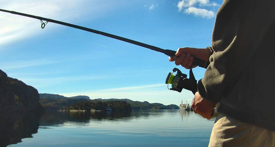 платная рыбалка в москве на спиннинг