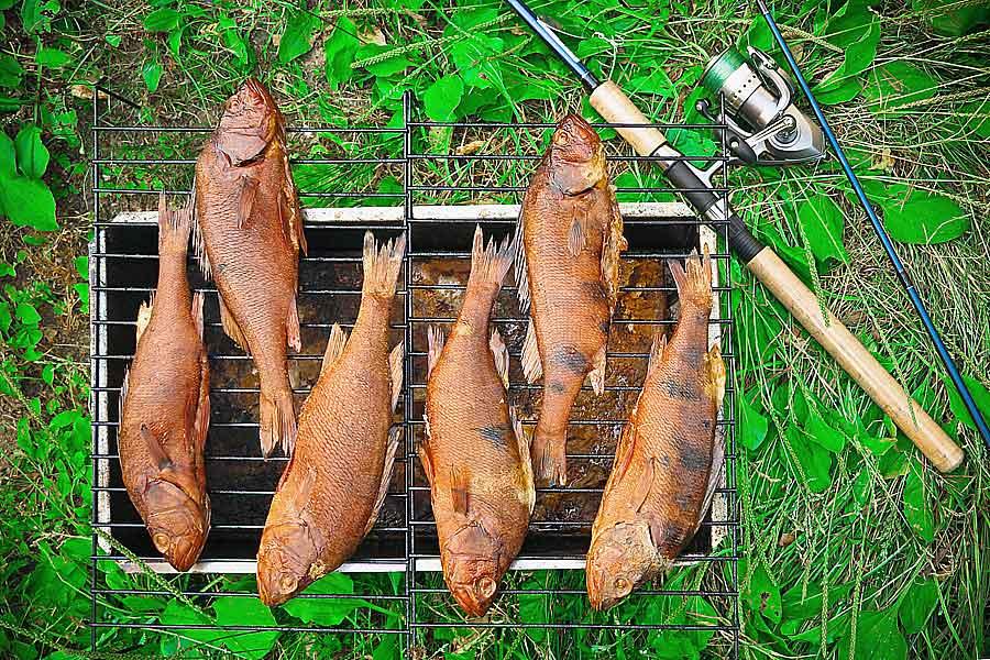 Рыба горячего копчения приготовленная у водоёма фото