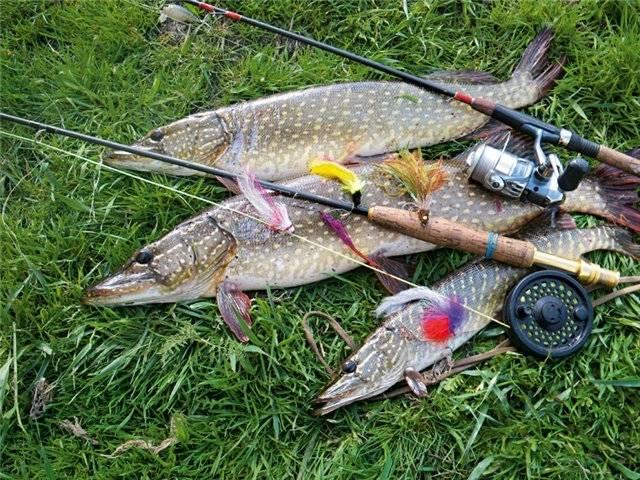 что должен иметь при себе рыболов отправляясь на рыбалку